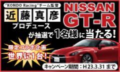 gt-r-bnr011.jpg